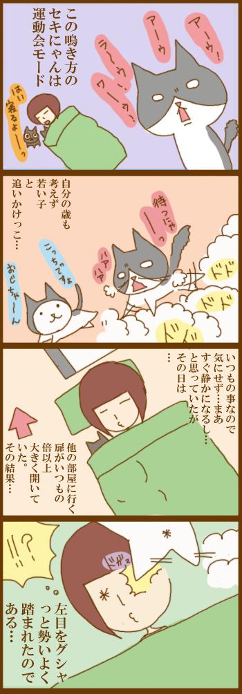 f:id:suzuokayu:20201216093919j:plain