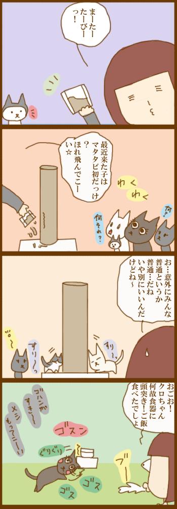 f:id:suzuokayu:20201216094524j:plain