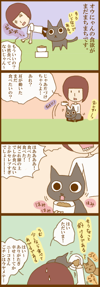 f:id:suzuokayu:20201216094719j:plain