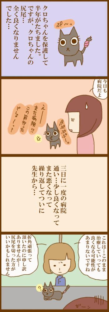 f:id:suzuokayu:20201217170643j:plain