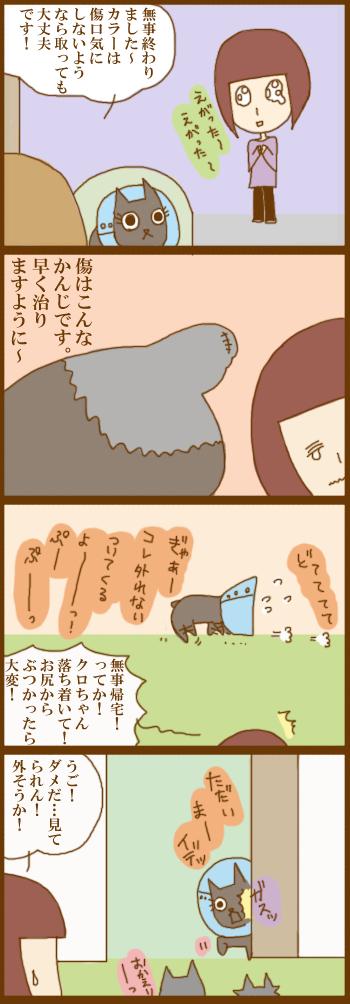 f:id:suzuokayu:20201217171054j:plain