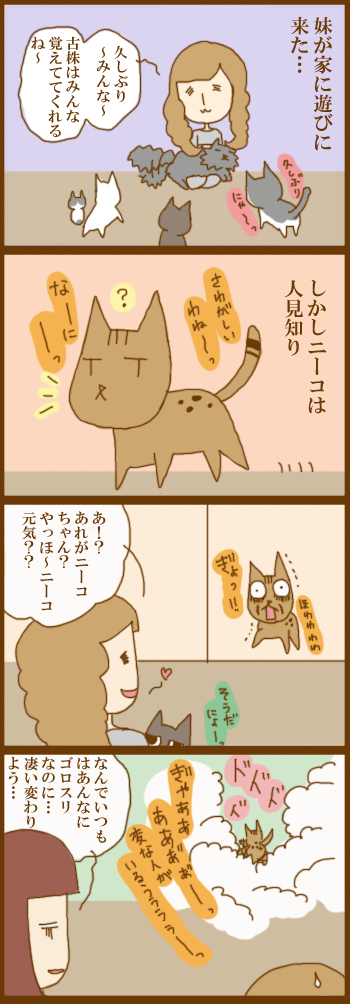 f:id:suzuokayu:20201218092037j:plain