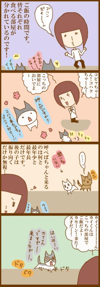 f:id:suzuokayu:20201218092425j:plain