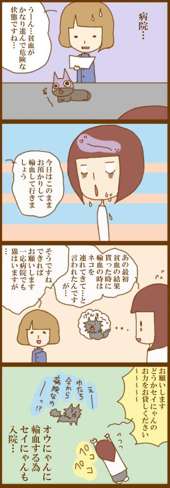 f:id:suzuokayu:20201220161854j:plain