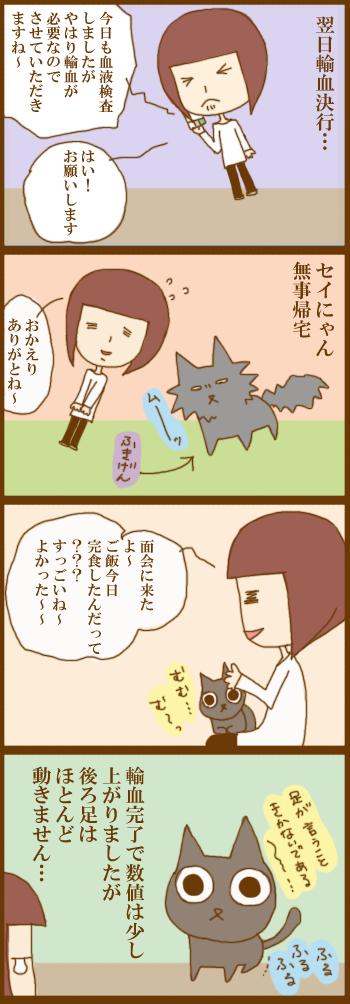 f:id:suzuokayu:20201220162102j:plain