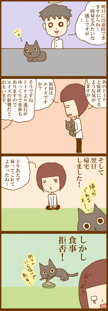 f:id:suzuokayu:20201221094101j:plain
