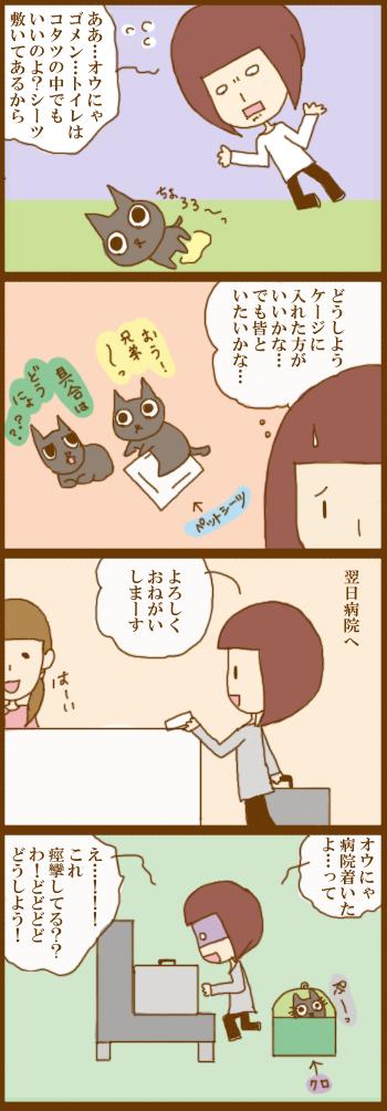 f:id:suzuokayu:20201222134907j:plain
