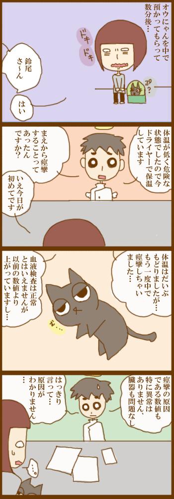 f:id:suzuokayu:20201223104032j:plain