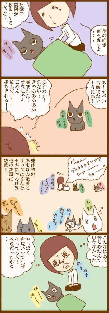 f:id:suzuokayu:20201223104452j:plain