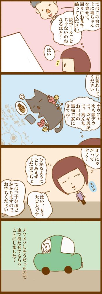 f:id:suzuokayu:20201225093124j:plain