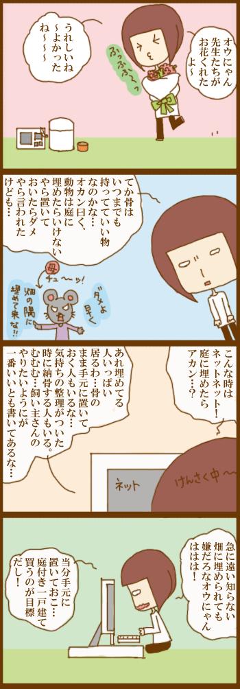 f:id:suzuokayu:20201225095134j:plain