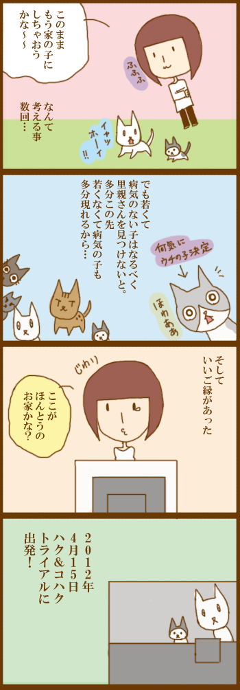 f:id:suzuokayu:20201228093401j:plain