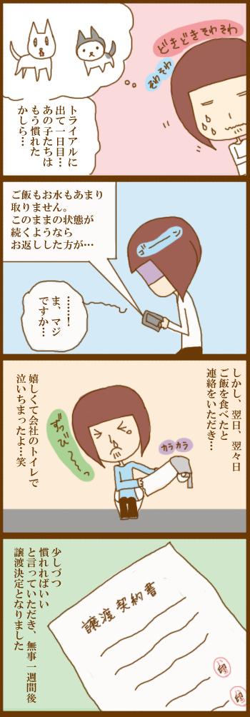 f:id:suzuokayu:20201228094228j:plain