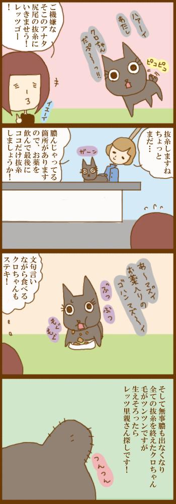 f:id:suzuokayu:20201228102030j:plain