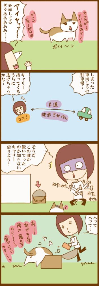 f:id:suzuokayu:20201229091942j:plain