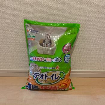 f:id:suzuokayu:20210111160754j:plain