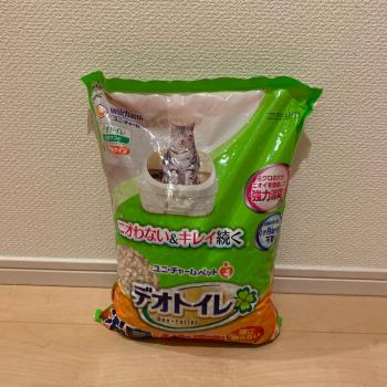 f:id:suzuokayu:20210111161653j:plain
