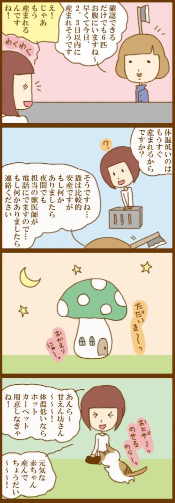 f:id:suzuokayu:20210124182720j:plain