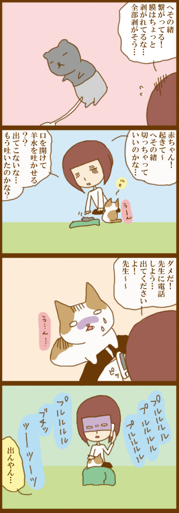 f:id:suzuokayu:20210126140239j:plain