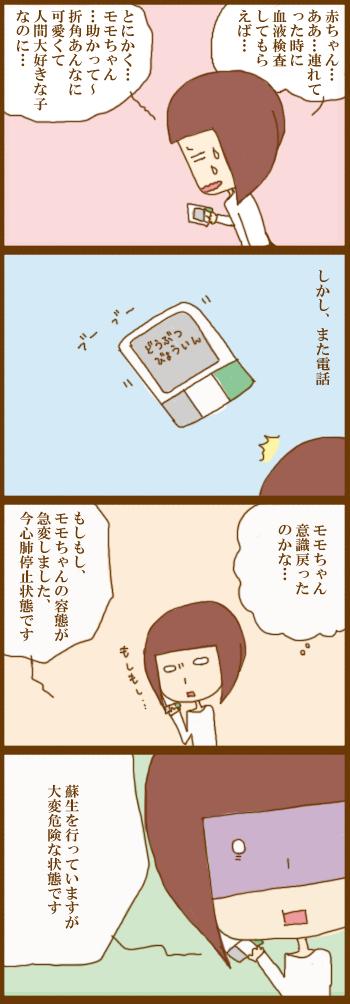 f:id:suzuokayu:20210129110401j:plain