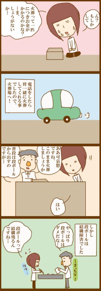 f:id:suzuokayu:20210204152202j:plain