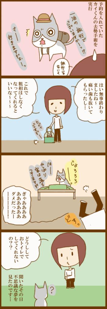 f:id:suzuokayu:20210209131742j:plain