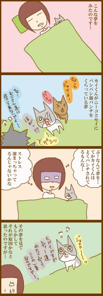f:id:suzuokayu:20210210112906j:plain