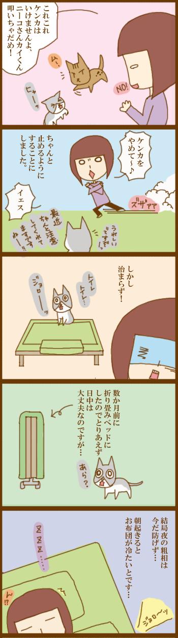 f:id:suzuokayu:20210211190154j:plain