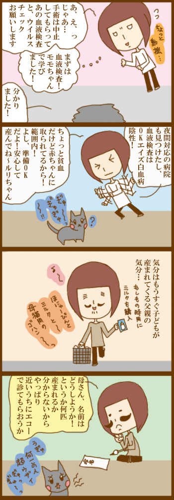 f:id:suzuokayu:20210219095408j:plain