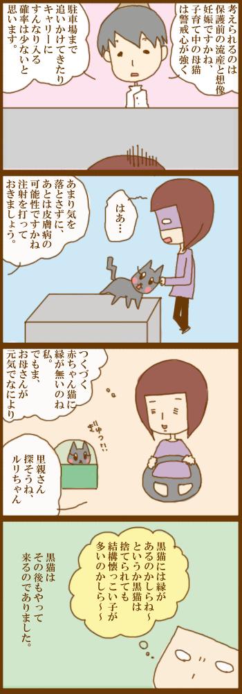f:id:suzuokayu:20210224095639j:plain