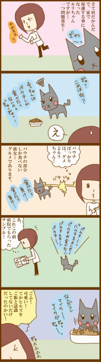 f:id:suzuokayu:20210227160358j:plain