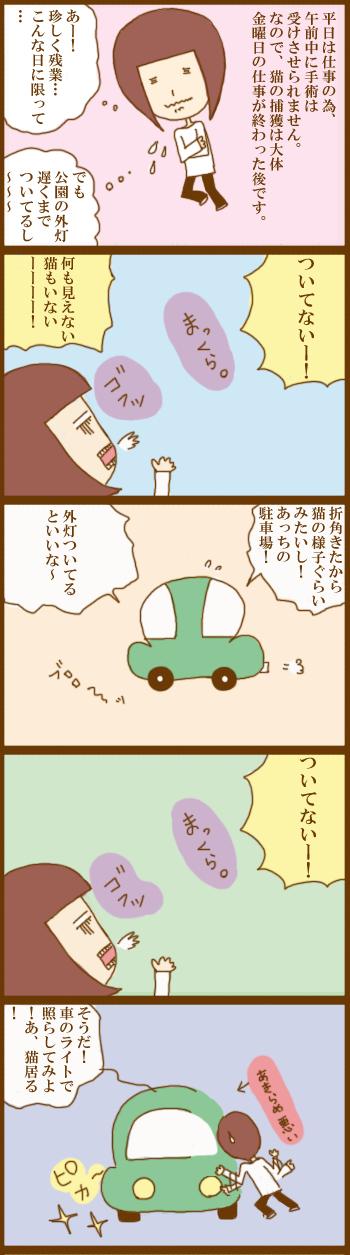 f:id:suzuokayu:20210228190139j:plain