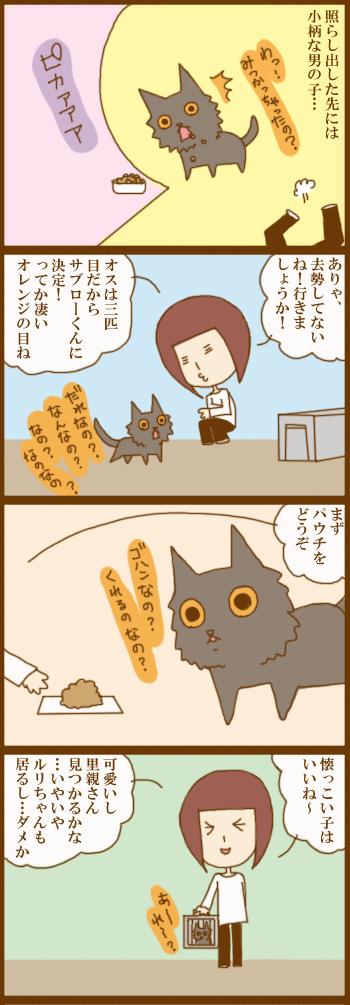 f:id:suzuokayu:20210301090956j:plain