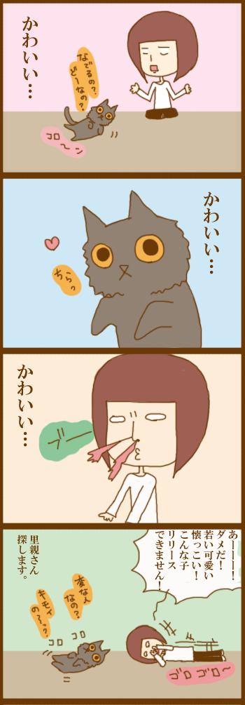 f:id:suzuokayu:20210303101540j:plain