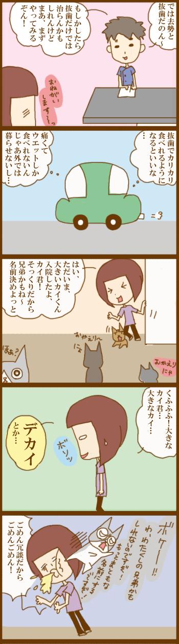 f:id:suzuokayu:20210308094107j:plain