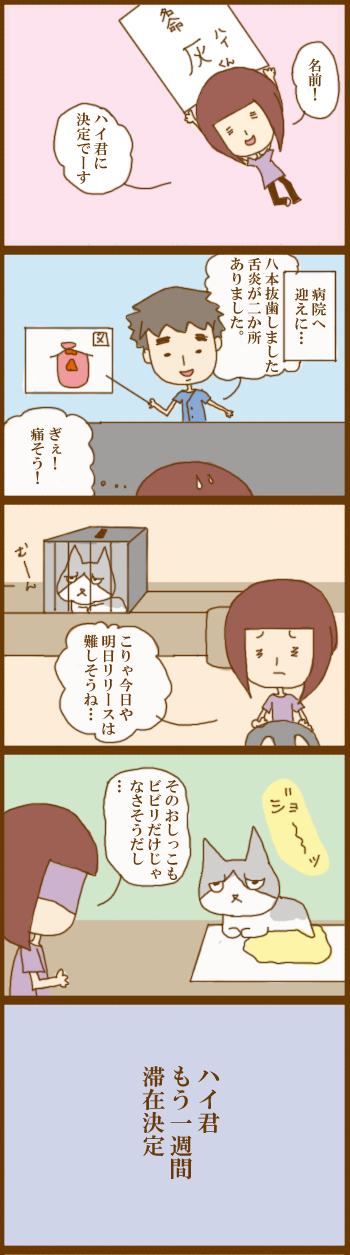 f:id:suzuokayu:20210309104620j:plain