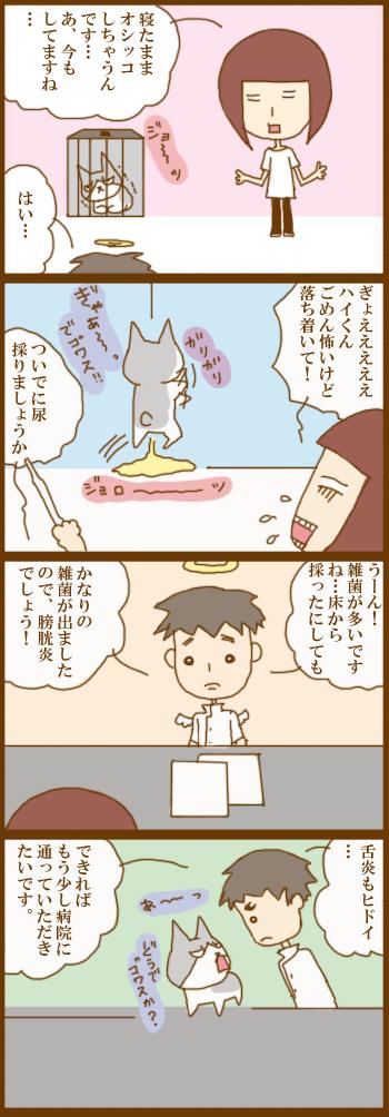 f:id:suzuokayu:20210310091704j:plain