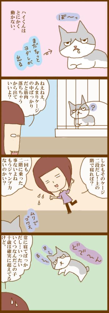 f:id:suzuokayu:20210311090017j:plain