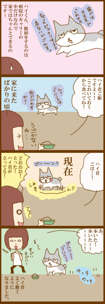 f:id:suzuokayu:20210315090902j:plain