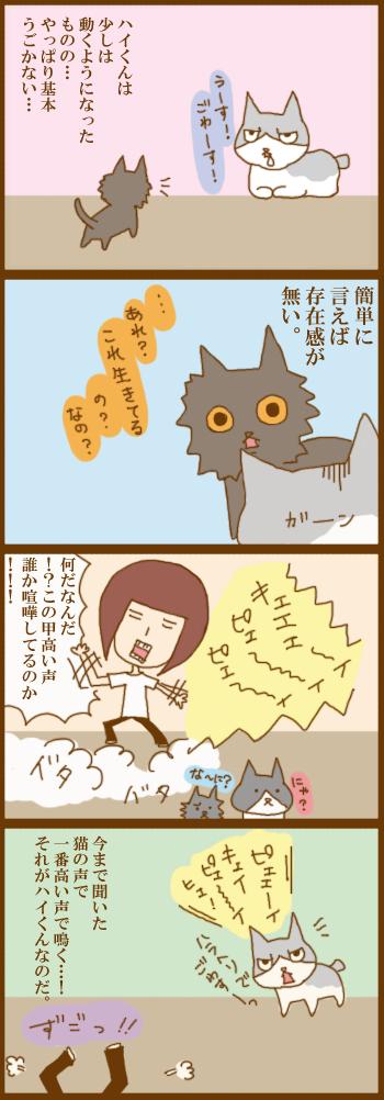 f:id:suzuokayu:20210317091435j:plain