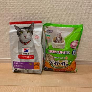 f:id:suzuokayu:20210325230406j:plain