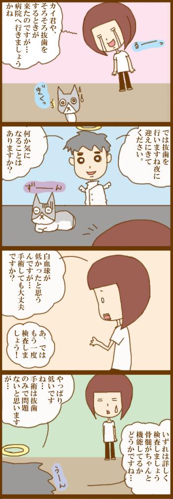 f:id:suzuokayu:20210406090830j:plain