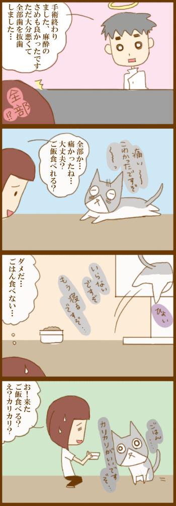 f:id:suzuokayu:20210407093448j:plain