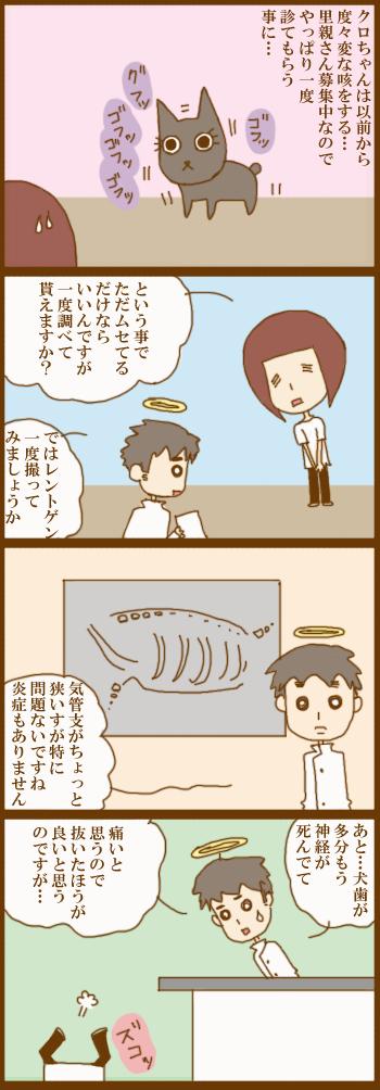 f:id:suzuokayu:20210410181117j:plain