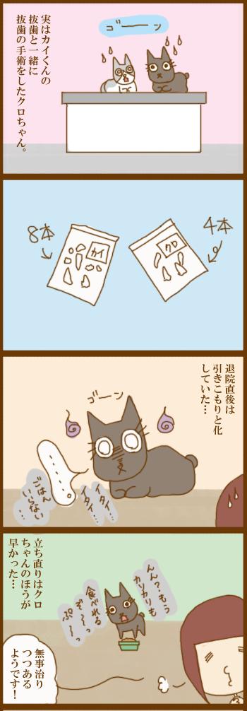 f:id:suzuokayu:20210411203458j:plain