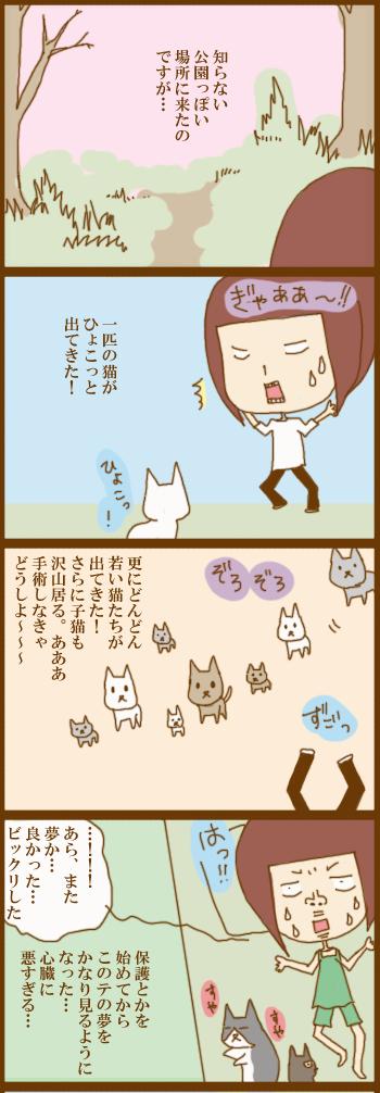 f:id:suzuokayu:20210413090735j:plain