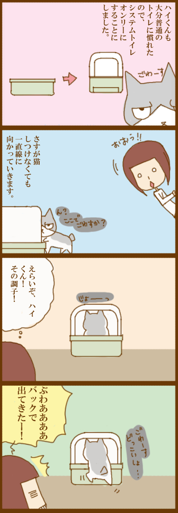 f:id:suzuokayu:20210426094757j:plain