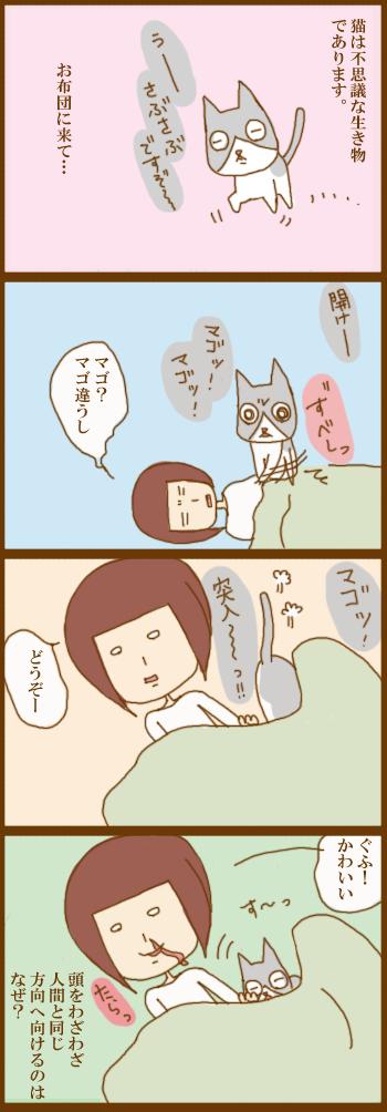 f:id:suzuokayu:20210427092142j:plain