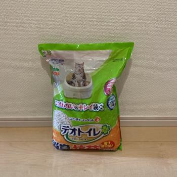 f:id:suzuokayu:20210505175356j:plain