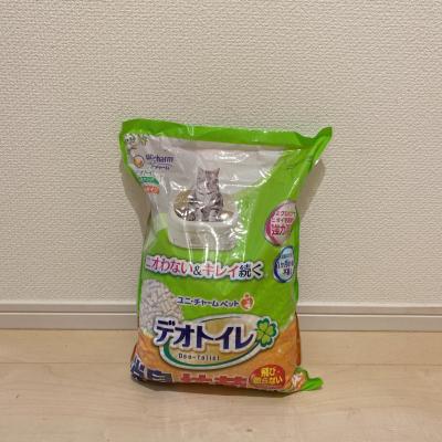 f:id:suzuokayu:20210614112135j:plain